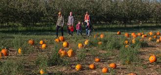 Pumpkin Picking South Nj by Nj Pyo Pumpkins Pumpkin Farms In New Jersey Best Of Nj Nj