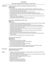 Download Real Estate Consultant Resume Sample As Image File