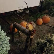 Best Pumpkin Patch Torrance by Debbie And Jeff U0027s 56 Photos U0026 29 Reviews Christmas Trees 411