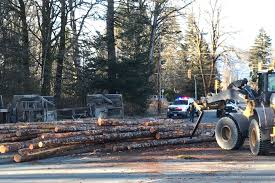 100 Logging Truck Accident Truck Loses Its Load At Busy Port Alberni Intersection