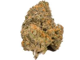 9 most popular weed strains Business Insider