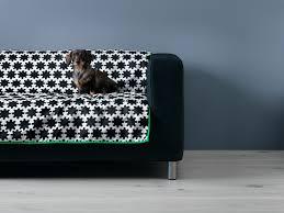 Bowser Dog Beds by Green Dog Milk