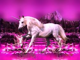 0 2629x1477 Fantasy Unicorn Wallpaper 800x600 Free