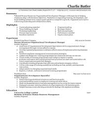 Organizational Development Resume Example