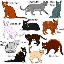 warrior cat names warrior cat leader adoptables by sicila on deviantart