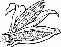 Corn Coloring Page Printable