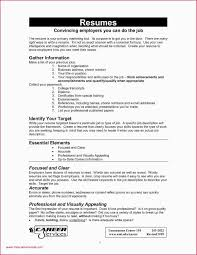 Updating Resume After First Job Best Time Management Resume 51 Time ... Diy Resume Ekbiz Conducting Background Invesgations And Reference Checks 20 Skills For Rumes Examples Included Companion What Do Employers Look For In A Tjfsjournalorg 21 Inspiring Ux Designer Why They Work What Do Employers Look In A Resume Focusmrisoxfordco Inspirational Best Way To Write Atclgrain Recruiters Hate The Functional Format Jobscan Blog How Great Data Science Dataquest Guide Good On Paper The Hbcu Career Centerthe Ready