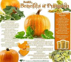 Shock Top Pumpkin Wheat Calories by Healthy You Nutrition