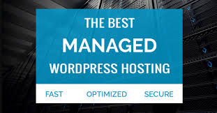The Best Managed WordPress Hosting Service 2018 5 Best Web Hosting Services For Affiliate Marketers 2017 Review Bluehost Service Provider Mytrendincom Unmetered Vps Virtual Private Sver 10 Wordpress 2018 Wpall What Makes The Choice Of Free Dezzaincom In Reviews Performance Tests Best Managed Top Companies Websites Most Popular 101 How To Get Started Fast Identify The Ideal Video Hosting Infographic Providers 2015 Open Cloud