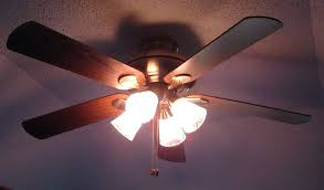 ceiling fan light bulb socket size ideas bulbs harbor