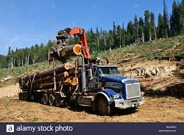 Logging Truck Bc Canada Stock Photos & Logging Truck Bc Canada Stock ... Self Loader Log Trucks For Sale Bc Best Truck Resource 2015 Serco 160 Forestry Equipment Spokane Wa 8537902 Alberta Loaders Knucklebooms Rotary Group Study Exchange 2010 2011 Kenworth T800b Logging Truck For Farming Simulator 2017 Hyva Cporate Mounted Cranes 1988 T800 Logging 541706 Miles Home Adk Forestech And Roadbuilding Specialist Dodge Ram 4500 Wrecker Tow Truck For Sale 1409