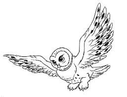 Snowy Owl Coloring Page Pages For Kids Animal Of Free Online