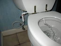 astounding bidet toilet ideas best idea home design extrasoft us