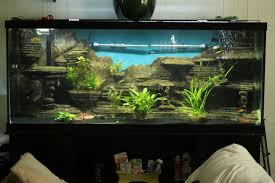Extra Large Fish Tank Decorations by Make A 3d Aquarium Background 14 Steps With Pictures