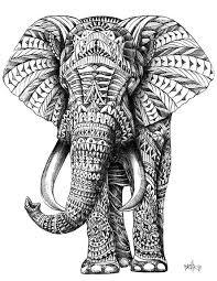 Ornate Elephant Art Print By BioWorkZ