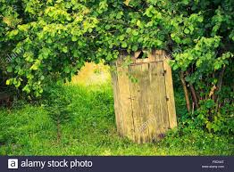 Old Wooden Backyard Outhouse. Rustic Outhouse Stock Photo, Royalty ... Barns Outhouse Plans Pdf Pictures Of Outhouses Country Cool Design For Your Inspiration Outhousepotting Shed Coop Build Backyard Chickens Free Backyard Garden Shed Isometric Plan Images Cottage Backyard Kiosk Thouse Exchange Door Nyc Sliding Designs Fresh Awning Outdoor Shower At The Mountain Cabin Eccotemp L5 Tankless Water Keter Manor Large 4 X 6 Ft Resin Storage In Mountains Northern Norway Dunnys Victorian And Yard Two Up Two Down Terrace House