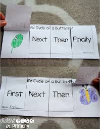 Life Cycle Of A Pumpkin Seed Worksheet by Life Cycle Of A Butterfly Sequencing Abc Reading Pinterest