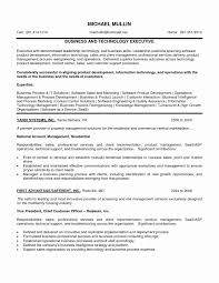 Executive Summary Resume Example Best Of Technology Examples