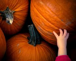 The Colony Tx Pumpkin Patch by Fall Events U0026 Activities In Bryan College Station
