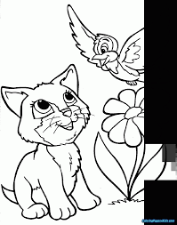 Cute Baby Wolf Animal Coloring Pages Dragoart