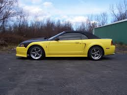 For Sale 2001 Mustang Cobra Ford Mustang Forums Corral