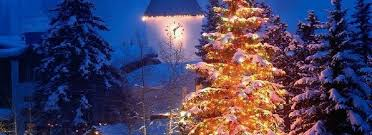 Get The Best Choice For Xmas Tree Christmas