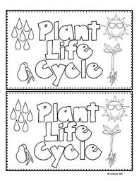 Plant Life Cycle Emergent Reader Freebie Pages