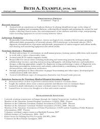 Veterinarian Resume Examples Best Of 301 Moved Permanently
