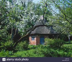 100 Houses In Nature Summer Houses Thatched Roof Trees Blossoms Spring