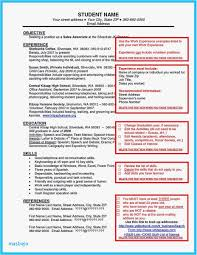 Barback Resume Examples New Welder Example Construction Sample Resumes