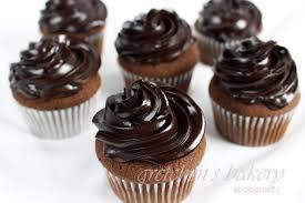 Double Chocolate Fudge Cupcakes