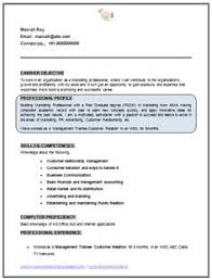 Professional Curriculum Vitae Resume Template Sample Of Nice MBA Marketing Fresher No Experience