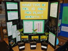 Boards Success Science Fair Projects For 5Th Grade Contact Lenses Tutorial