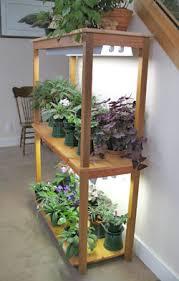 fluorescent bulbs for growing plants solidaria garden
