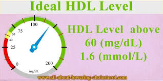 hdl cholesterol range normal normal levels of cholesterol