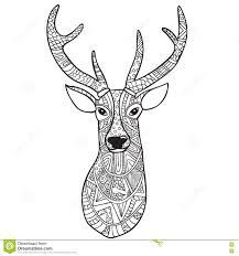 Deer Coloring Page Eliolera