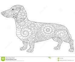 Royalty Free Vector Download Dachshund Coloring Book