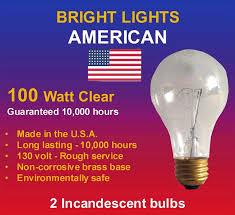 bright lights inc home