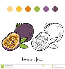Royalty Free Vector Download Coloring Book Fruits And Vegetables