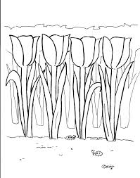 Free Tulip Coloring Pages