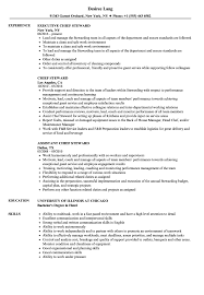 Chief Steward Resume Samples | Velvet Jobs How To Write A Perfect Food Service Resume Examples Included By Real People Pastry Assistant Line Cook Resume Sample Chef Hostess Job Description Host Skills Bank Teller Njmakeorg Professional Dj Templates Showcase Your Talent 74 Outstanding Media Eertainment 12 Sample From Stay At Home Mom Letter Diwasher Cover Letter Colonarsd7org Diwasher For Inspirational Best Barista 20 Of Descriptions Samples 1 Resource