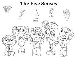 Five Senses Coloring Pages Sheet Free Sheets Templates
