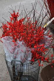 Winterberry Christmas Tree Farm by Detroit Garden Works Dirt Simple Part 4