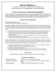 Examples Of Proje Example A Resume Program Management