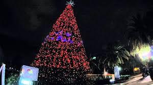 Eola Wonderland Christmas Tree Show