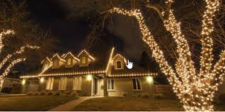 With A Few Measurements And Little Bit Of Planning You Can Wrap Your Outdoor Trees Christmas Lights If Do It Right Turn