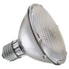Halogen PAR Light bulbs