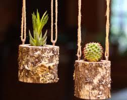 House Warming Gift Planter Hanging Indoor Rustic Succulent Log Cactus Holder