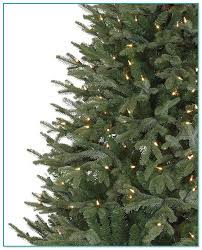 Silvertip Fir Christmas Tree by Pre Lit Wall Hanging Christmas Tree