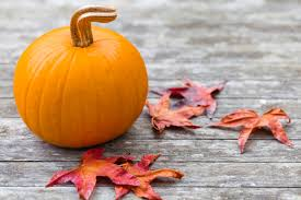 Types Of Pumpkins For Baking by 3 Recipes That Will Use Your Whole Pumpkin Get Healthy U